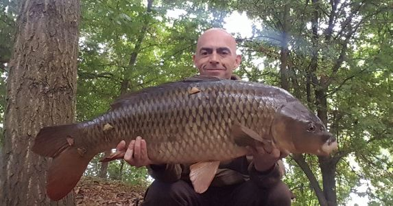20lb Chocoberry Paul Miller