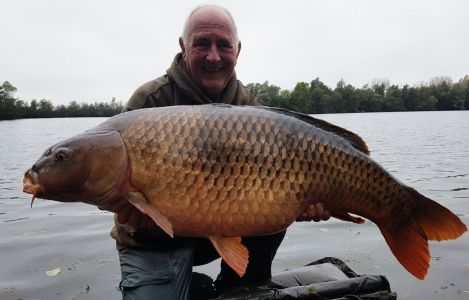 50lb Kmt Bill Phillips