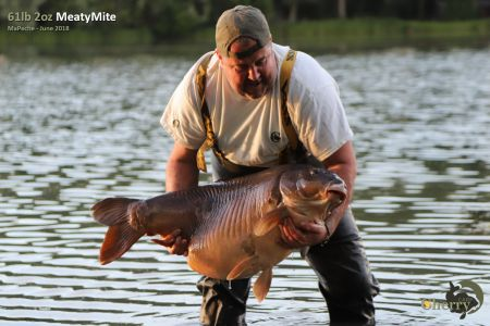 61lb 2oz in water for print