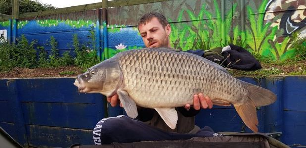 Dave O Connor 20lb 10oz Chocoberry