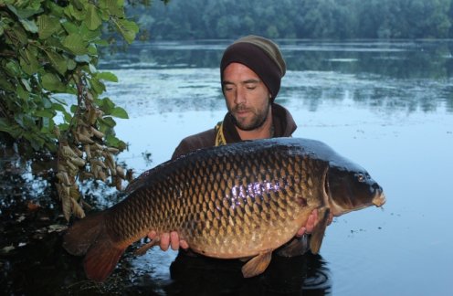 Save money and save carp