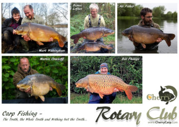 CherryCarp Rotary Club – Rigs – Part 1